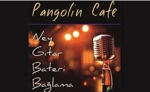 PANGOLİN CAFE