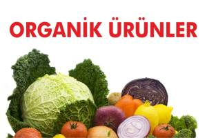 Organik Gıda fuarı