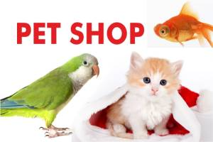 Pet Shop fuarı