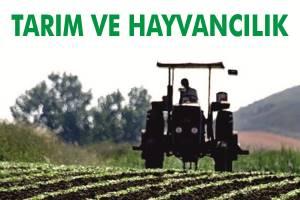 Tarım ve Hayvancılık fuarı